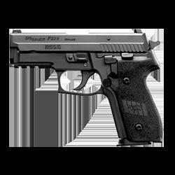 P228 / P229