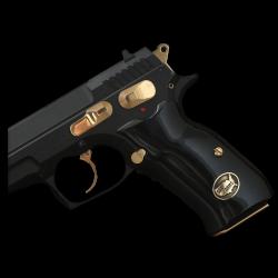 Sarsılmaz B6 Hawk Model Compatible Black Acrylic Grip for Replacement (Brass Logo)